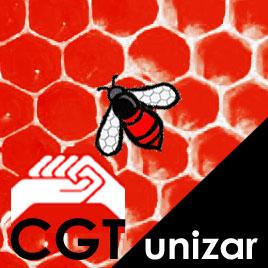 CGT unizar apoya a la Plataforma por la Dignidad en la Investigación