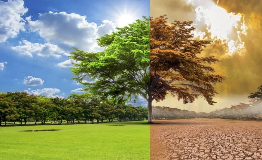 Cambio climático y nuestros papel como docentes
