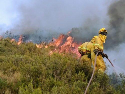 CGT en SARGA seguimos apostando por la profesionalización de lxs bomberxs forestales y por un operativo público y de calidad